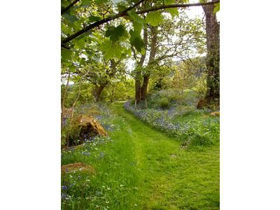 Bluebell Walk Mews Cottage Ardoch Lodge Loch Lomond and the Trossachs | Holiday Cottage in Scotland