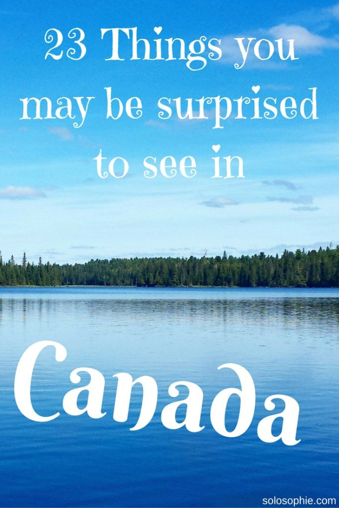 things you may be surprised to see in canada