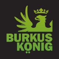 Favicon for Burkus König by Csípős.