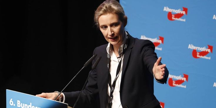 Germany's far-right AfD picks lesbian leader for election campaign · PinkNews