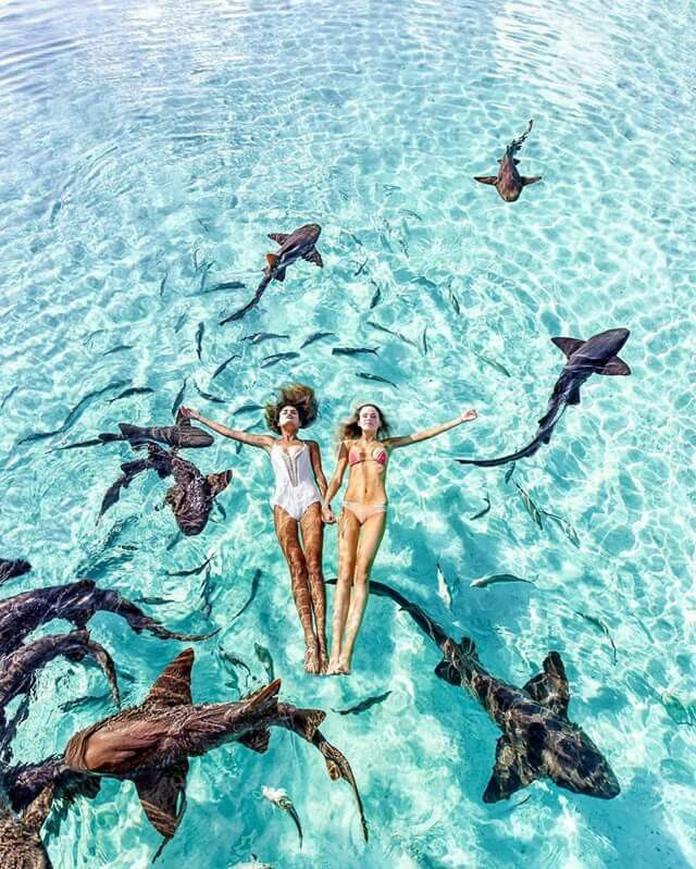 swimming in the Bahamas