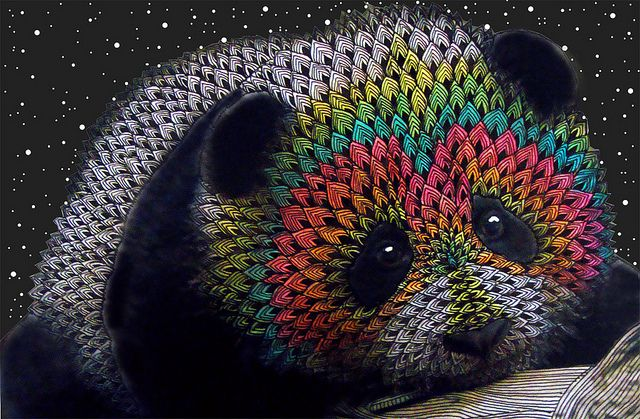 Rainbow Panda, dedicado a mi Papá, via Flickr.