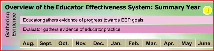 Overview of the Summary Year of the Effectiveness Cycle.