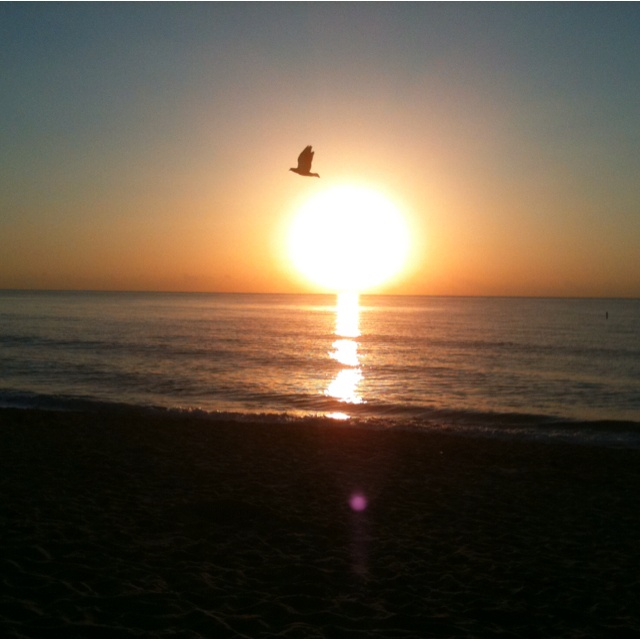 Sunrises: Beautiful Sunrises, Sunsets Beauty, Sunrises A, Sunrises Start, Beauty Sunri, 1 000 000 Sunrises, Sunrise Sunsets, Sunri Sunsets, Sunrises Sunsets