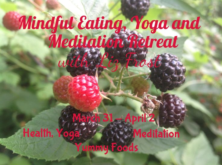 Mindful Eating, Yoga and Meditation Retreat with Liz Frost March 31 - April 2, 2017