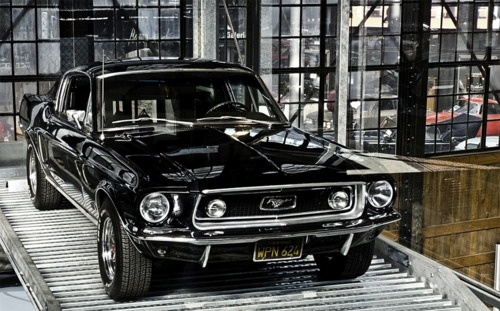 black beauty: Mustangs, Muscle Cars, Beauty Mustang, Black Beauty, Posts, Dream Cars, Auto, Awesome Cars, Cars Trucks