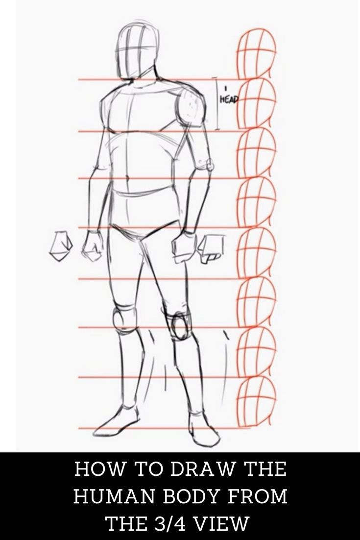Don T Miss This Free Tutorial Learn How To Draw The Human Body In A 3 4 View Click The Visit Button Now A Human Body Drawing Drawing Tips 3d Drawing Tutorial