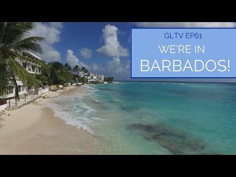 Barbados Videos – Goats On The Road – Barbados