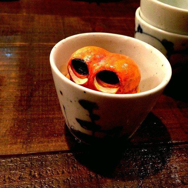 Gazing... #mizumushikun #eye #cute #funny