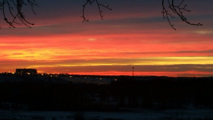 Sunrise over Fish Creek Provincial Park with the South Health Campus Calgary Hospital in view.