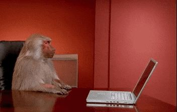 macaco-computador-babuino.gif (352×224)