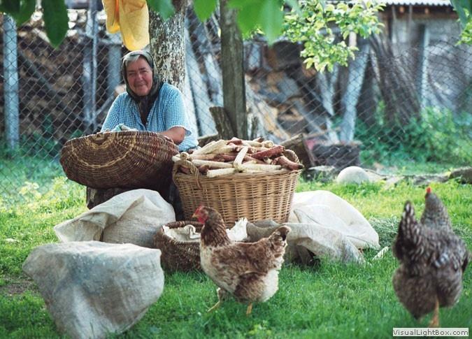 village life in Romania