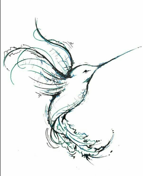 humming bird drawing beautiful tattoo ideas pinterest