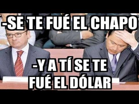 memes del dolar mexicano