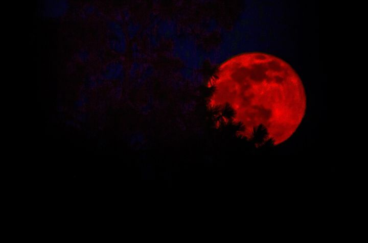 Images of Strawberry Moon - holy crap that's beautiful!!