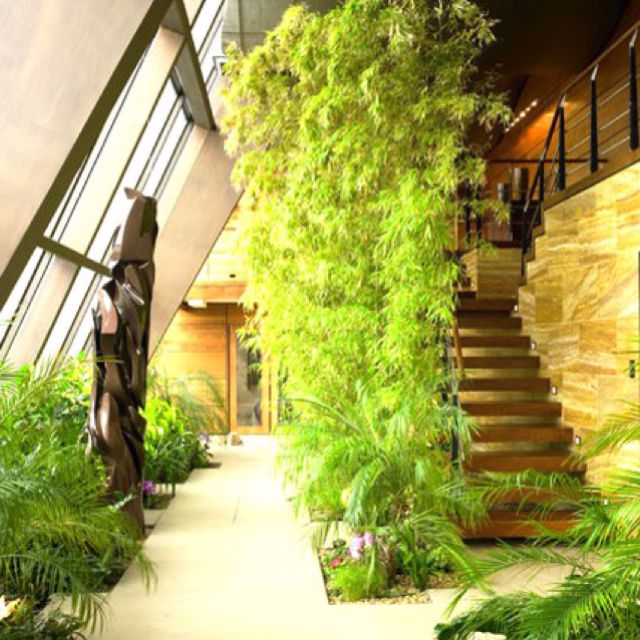 Contemporary Entry : Outdoor Indoor, Indoors Plants, Home Designers Near  Bedford, Green Room, Walls Of Windows
