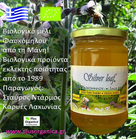 Βιολογικό μέλι Φασκόμηλου από τη Μάνη 'Silver Leaf'! Το μέλι φασκόμηλου του μελισσοπαραγωγού Σταύρου Ντάρμου, είναι ένα αγνό και φυσικό μέλι (δεν είναι ζεσταμένο, φιλτραρισμένο). Το συλλέγουν οι μέλισσες από τα άνθη των αυτοφυών φυτών φασκόμηλου στα βουνά της Μάνης, που λάμπουν κάθε άνοιξη σε φωτεινά βιολετί χρώματα. Είναι ένα σπάνιο μέλι, με χρυσαφί χρώμα και μοναδική αρωματική γεύση! Ταιριάζει υπέροχα με το Ταχίνι 'Silver Leaf'!
