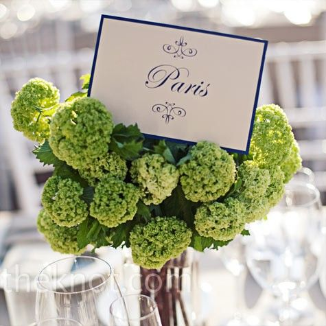 .: Floral Centerpieces, Green Floral, Table Card, Green Hydrangeas, Wedding Ideas, Photo, Table Numbers, Flower