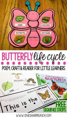 Teach your Kindergarten and primary students all about the life cycle of a butterfly with this butterfly life cycle poem, butterfly craft and FREE butterfly life cycle sequence strips! They are the perfect way to bring a little science into your spring activities!