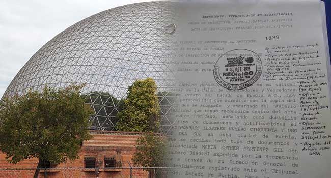 Camacho entrega a Profepa documentos que acreditan procedencia legal de aves