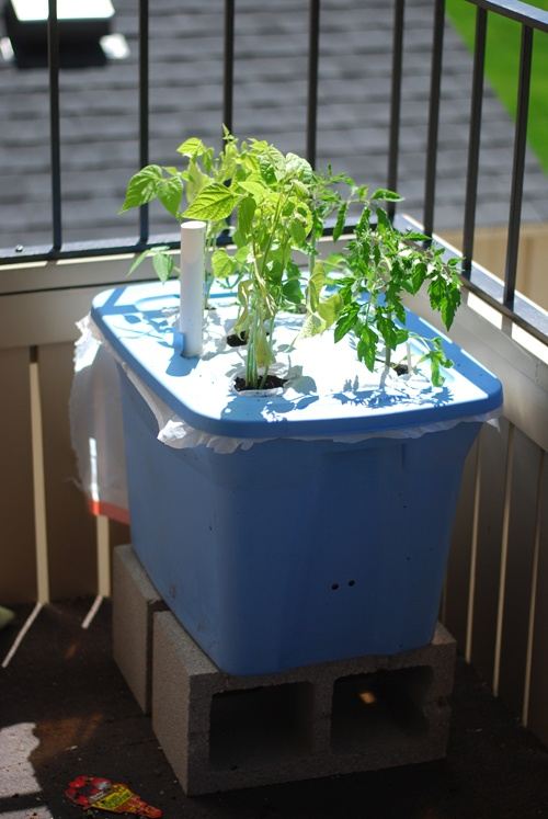 Rubbermaid Tub Earthbox Patio Garden DIY Tutorial--Perfect for transporting my herbs in and out of the house for much needed daylight..