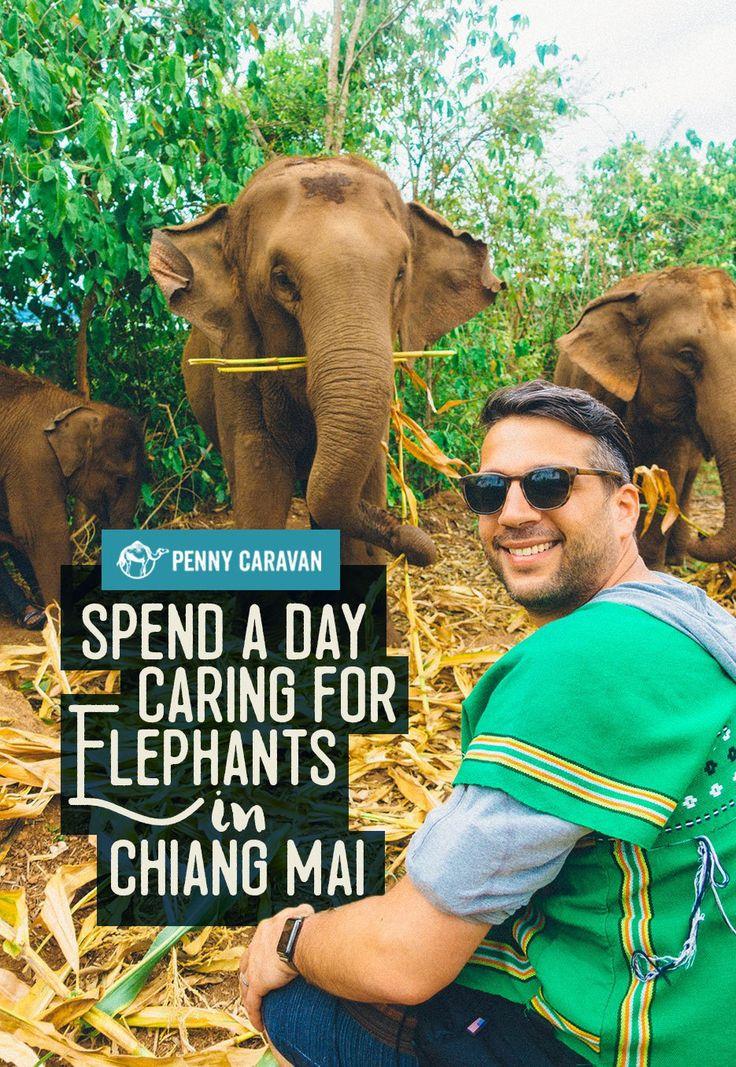 Elephant Nature Park, Thailand | Penny Caravan