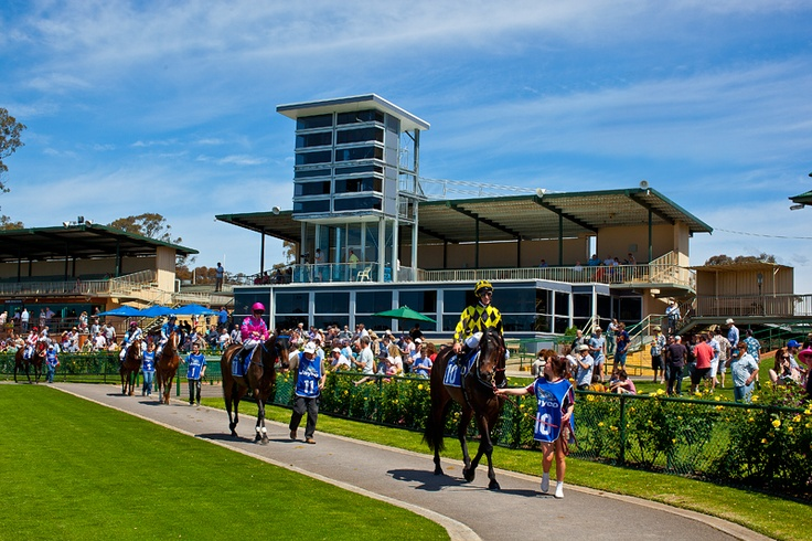 Bendigo Jockey Club | Architecture Matters, Melbourne