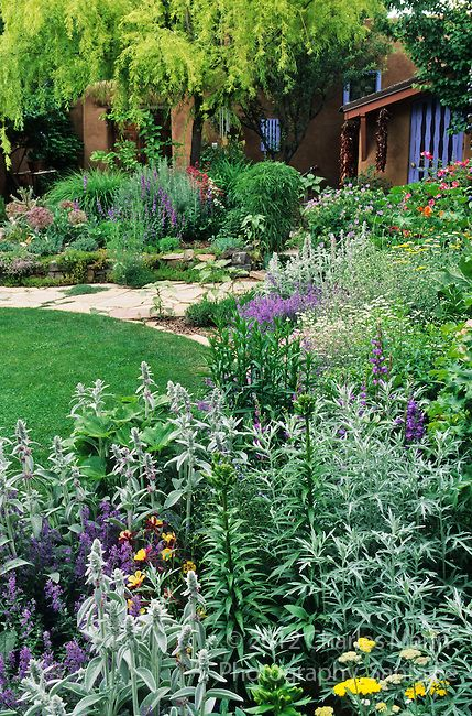 In the southwest and rocky mountain areas water wise for Mountain landscape design