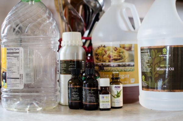 Best Homemade Repellent FLY SPRAY Recipe Homesteading  - The Homestead Survival .Com