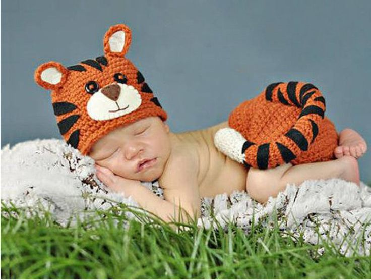 Auspicious Chinese Names for People or Babies Born in the Year of Tiger