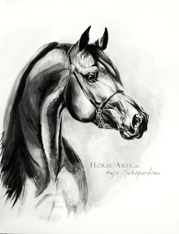 Arabian Portrait by ~Oceansoul84 on deviantART
