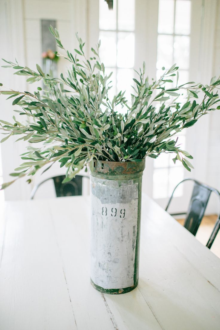 Olive Stem | The Magnolia Market