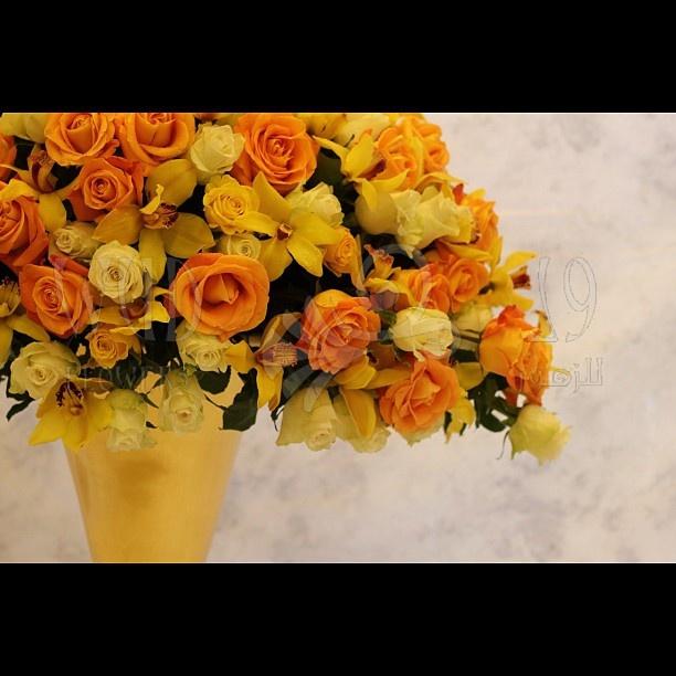And another WUD classic!  #wudflowers #flowers #flowerstagram #roses #yellow #orange #arrangement #floral #design #dubai #instagram #ig #instamood #instagood  And another WUD classic!  #wudflowers #flowers #flowerstagram #roses #yellow #orange #arrangement #floral #design #dubai #instagram #ig #instamood #instagoodOrange, Flowerstagram Rose, Wudflow Flower, Floral Design, Flower Flowerstagram, Design Dubai, Arrangements Floral, Instamood Instagood, Dubai Instagram