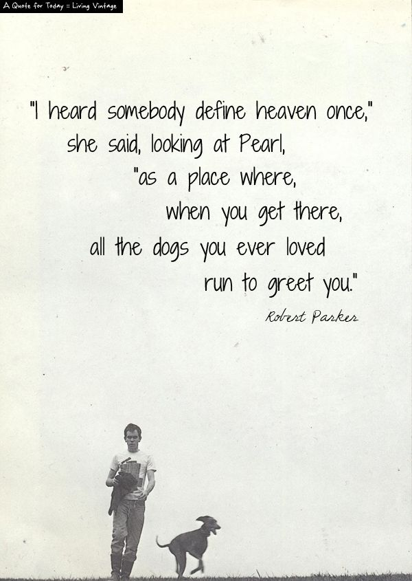 A Sweet Quote Regarding All The Dogs I Have Known And Loved Words