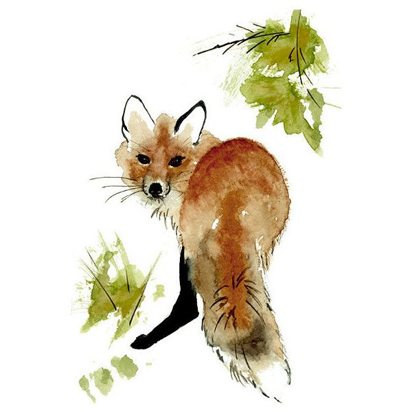 Red Fox Print from Original Watercolor Painting, Red Fox Illustration,... (375 UAH) ❤ liked on Polyvore featuring home, home decor and wall art