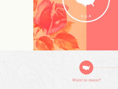 Roses: Client Inspiration, Graphic Design, Ahhhhh Color, Color Theory