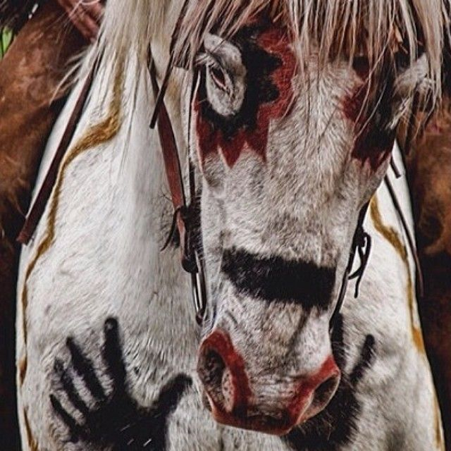 Love is like a wild horse; there's no taming it.