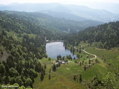 LAC DES TRUITES OU LAC DU FORLET (VOSGES) (HAUT-RHIN). est le plus élevé des lacs vosgiens. Il est dénommé Forlenweier en alsacien et reïf tou blan en welsch.  Situé au lieu-dit Le Forlet sur le territoire de la commune de Soultzeren, il est niché dans un large cirque glaciaire entouré de pentes abruptes culminant à 1 303 mètres (Gazon du Faing, Gazon de Faîte ...). Superficie2,85 ha, Longueur 250 m, Largeur 125 m, Altitude 1 060 m, Profondeur 11 m