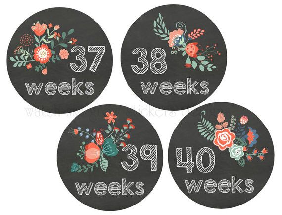 BIG SALE Pregnancy Stickers Belly Stickers by WatchMeGrowStickers