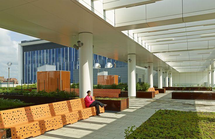 Eskenazi Health Ambulatory Care Building & Sky Garden | RATIO Architects