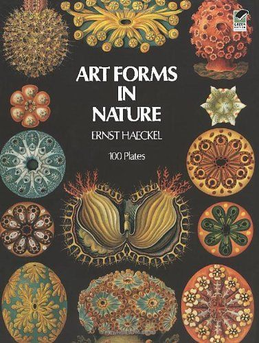Art Forms in Nature (Dover Pictorial Archive), http://www.amazon.com/dp/0486229874/ref=cm_sw_r_pi_awdm_xs_Z2GmybA6WBZ4Y
