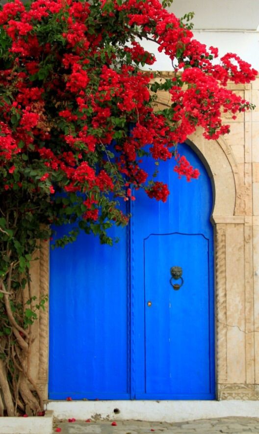 Sidi Bou Said, Tunisia door