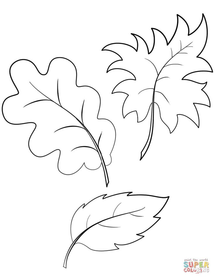 fall autumn leaves coloring page free printable pages