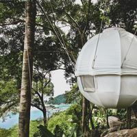 Cocoon Tree House