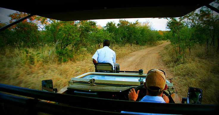 About the Manyeleti Game Reserve in South Africa