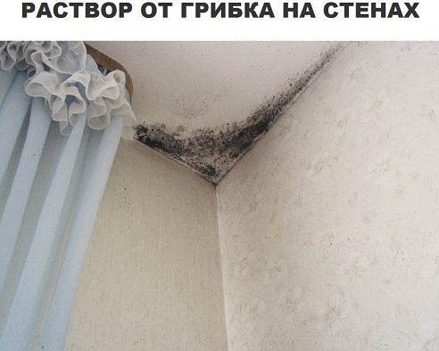 Борьба с грибком на стенах – еще одна тяжкая проблема в ремонте, но после обработки стен таким веществом, вы забудете, как выглядит грибок.  Не забывайте проветривать свою квартиру во избежание подобных случаев.  В 5 л. воды нужно кинуть одну таблетку фурацилина, и после обработки вы даже не заметите появления грибка на стенах или потолке. Если ситуация осложняется уже присутствием плесени, тогда сокращайте пропорции и кидайте таблетку в 1 л воды. Вот и все !Ваш раствор готов!