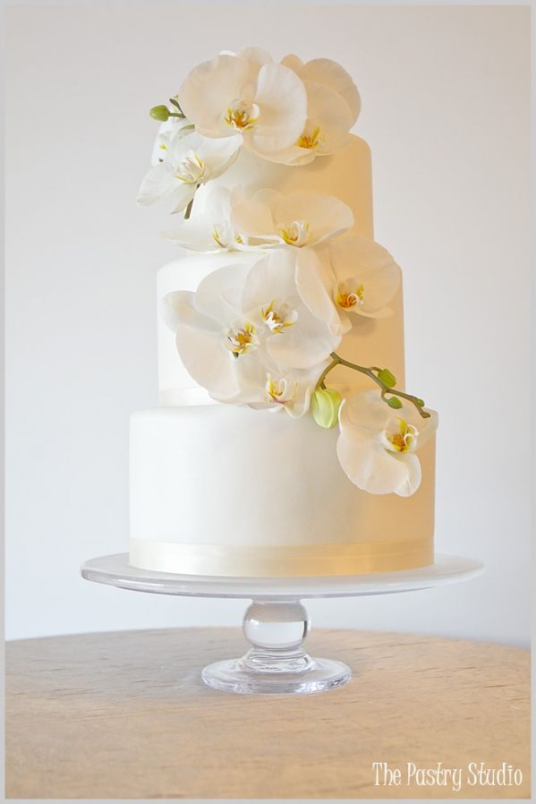 A Classic White Shimmered Wedding Cake adorned with Phalaenopsis Orchids by The Pastry Studio:Daytona Beach,Fl.