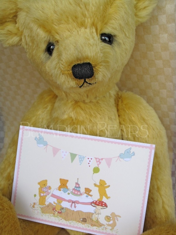 306 best Teddy Bear Picnic Ideas images on Pinterest   40 years ...