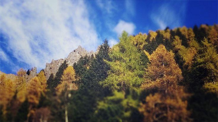 i più bei colori dell'Anno, bianco innevato e montagne immacolate di Neve escluse dai!!!!   Inverno arrivi?!?   pronti per le prime gite e sciate sulla neve amici?