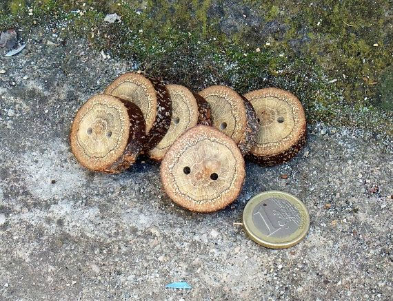 Wood Buttons-6  Handmade BlackJack tree branch buttons with